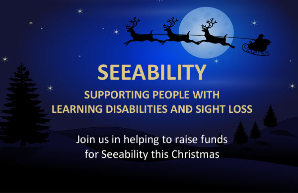 Text about Seeability on Christmas background picture.